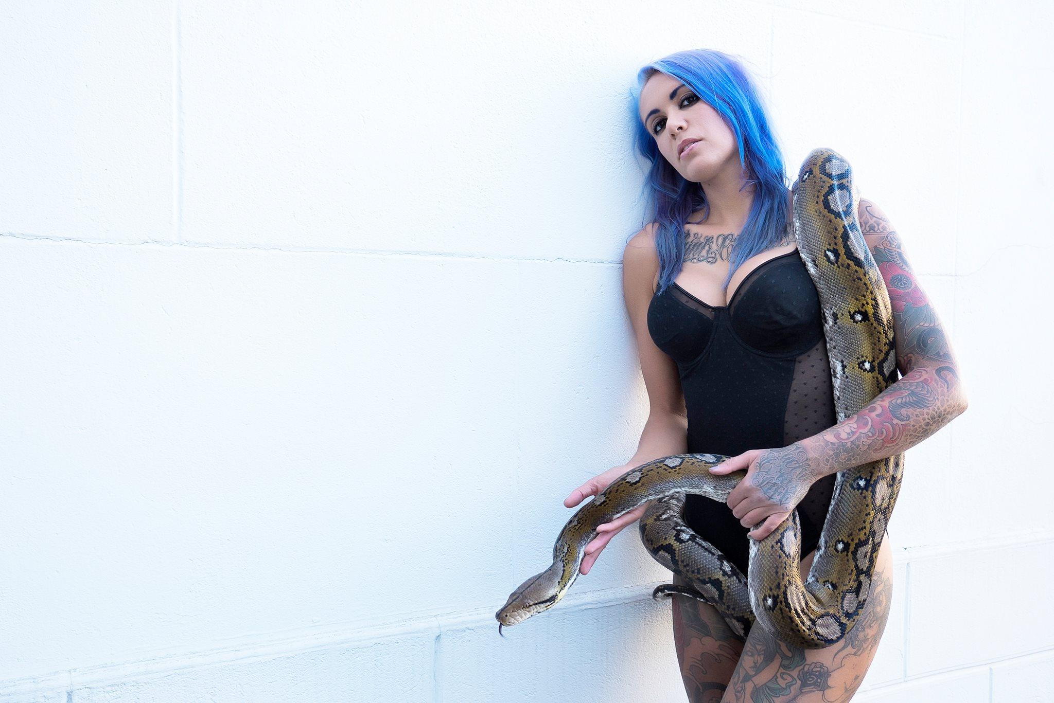 mélusine reptile
