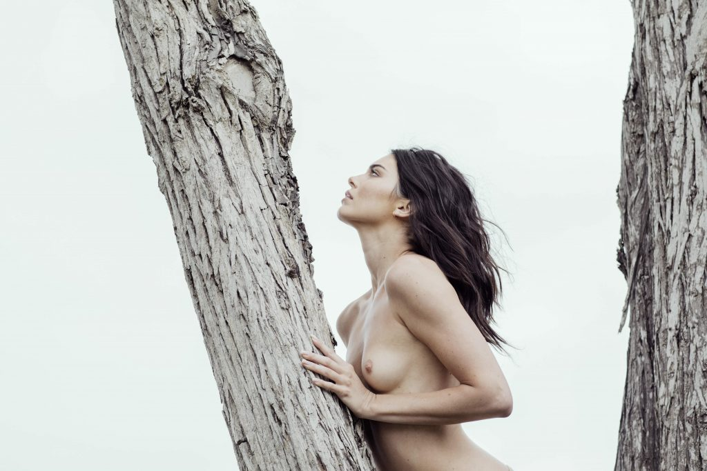 Kendall Jenner nue